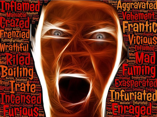 enraged-804311_640.jpg